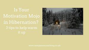 Motivation Mojo in hibernation