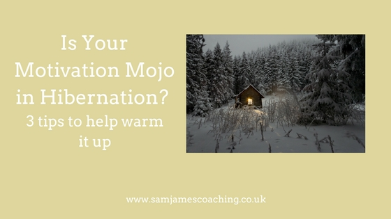 Motivation Mojo in hibernation