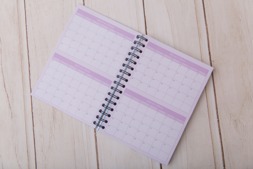 Stop the Flitter 2018 Diary Monthly Glance Spread